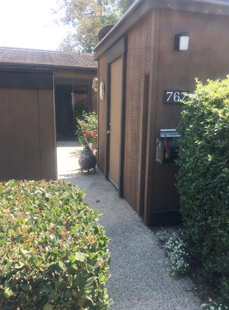 Entrance | Offerman/Manning murdered by East Area Rapist / Golden State Killer